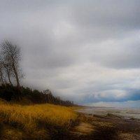 У моря :: ziemke ...