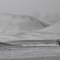 Зима не за горами :: Надежда Рябинина