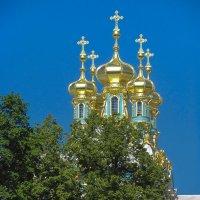 Золотые купола. Царское село :: evgeny ryazanov