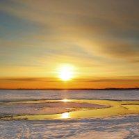 Ловушка для солнца :: Олег Сонин