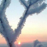 недолгое  солнышко :: Елена Герасимова