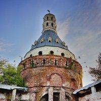 симонов монастырь :: Александр Шурпаков