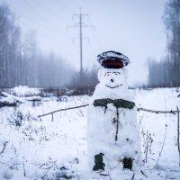 Снегодяй :: Юлия Аксёнова