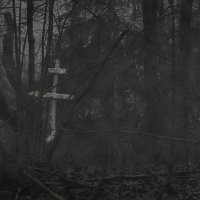Крест погибшему солдату. :: Юлия Русских