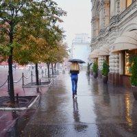 Осенний теплый дождь :: Виктор Берёзкин
