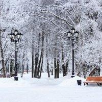 Снежный уют :: Евгений Никифоров