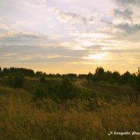 Вечер в поле :: Полина Солнечная