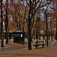 Осень.Париж.Люксембургский сад. :: ирина )))