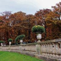 В Люксембургском саду. :: ирина )))