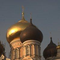Церковные купола :: Георгий Куценко