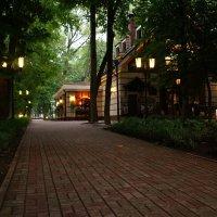 Кафе в вечернем парке :: Олег Козлов