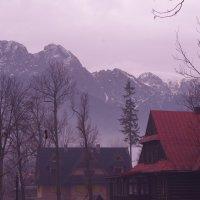 Гора Носаль... :: Aleksandr Kondratenko