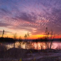 На закате дня :: Denis Aksenov