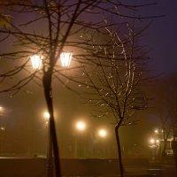Туманные сумерки :: Константин Бобинский