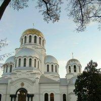 Александро-Невський собор (Каменец-Подольский) :: Игорь Погорильчук
