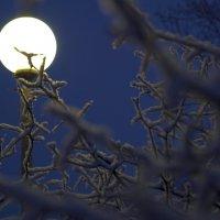 Почти Луна... :: Дмитрий Дмитрий