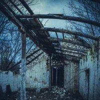 руины :: Alina Grib