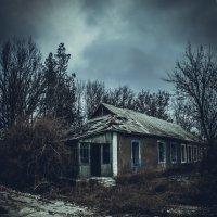брошенный дом :: Alina Grib