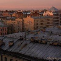 Крыши Питера :: Marina Kharitonova