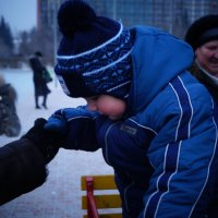 Frosty. :: Алёна Харитонова