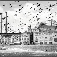 Московские зарисовки :: meltzer