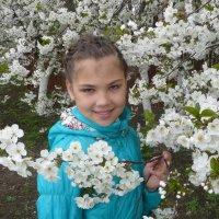 Весна вишни цветут :: Владимир
