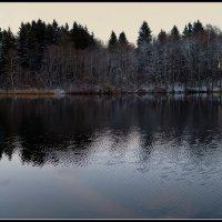 Колодинское озеро :: Любовь