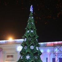 Новогодняя Одесса :: Антон Шелудков