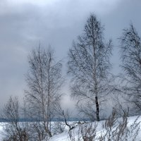 Теплый вечер Января. :: Pavel Kravchenko
