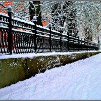 Зимняя графика :: Евгений Юрков