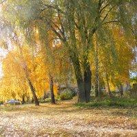 осень :: Gennadiy Korobov