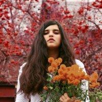 краски :: Лейла Искандерова
