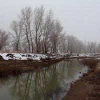 Мечётка в тумане :: Dr. Olver