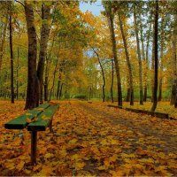Осень в городском парке :: Nikita Volkov