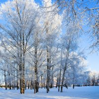 Зимний этюд :: Евгений Никифоров