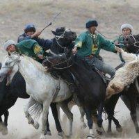 тартыс :: Алтынбек Картабай