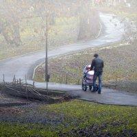 прогулка в тумане :: Василий Алехин