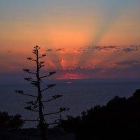 Сицилийский закат :: Ксения Медведева