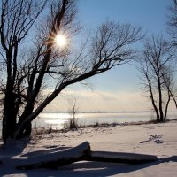 Мороз и солнце :: Dr. Olver