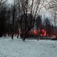парк :: Сергей Кочнев