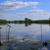Гладь старинного пруда.... :: Алёна Алексеева