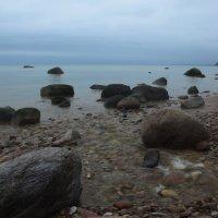 Финский залив :: Александр