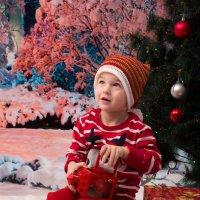 Новогодняя :: Юлия Зуева