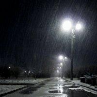 Снегопад :: Игнат Веселов