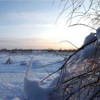 в январе :: sergej-smv