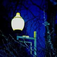 ночной фонарь из парка :: Марья Че