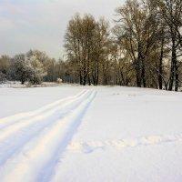 Следы на снегу :: юрий Амосов