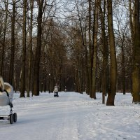 продолжение зимы :: Яков Реймер