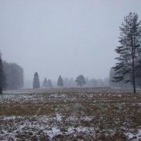 Холодность :: Владимир Гилясев