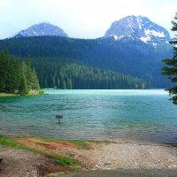 Черное озеро. Дурмитор :: Яна Кириченко